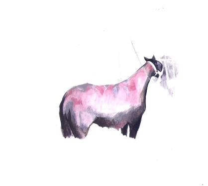 burnvictim-horse-1